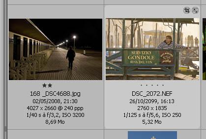 Bridge: Affichage des métadonnées