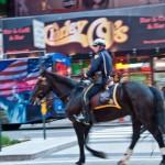 Dehesdin-New-York-cheval