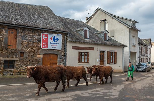 Le centre du bourg de Chaussenac en Cantal - Région Auvergne - Latitude 45.179 degrés Nord, longitude 2.277 degrés Est, altitude moyenne 700 m - 1613 ha - 235 habitants - 1900 bovins.